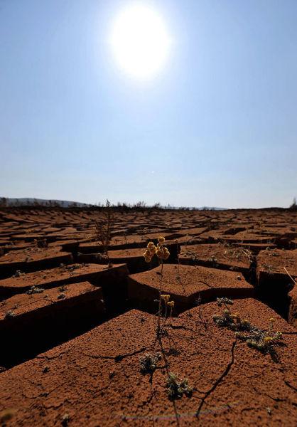 直击云南马龙干旱重灾区