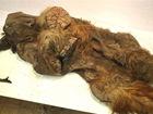 俄罗斯发现猛犸象尸体