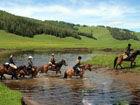去北疆!骑马穿行于喀纳斯!
