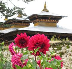 在不丹,慢旅行