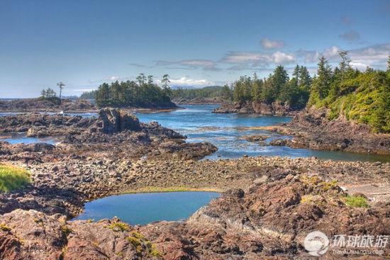 太平洋沿岸国家公园——温哥华岛,不列颠哥伦比亚,加拿大