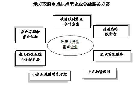 政府扶持型企业金融服务方案图片