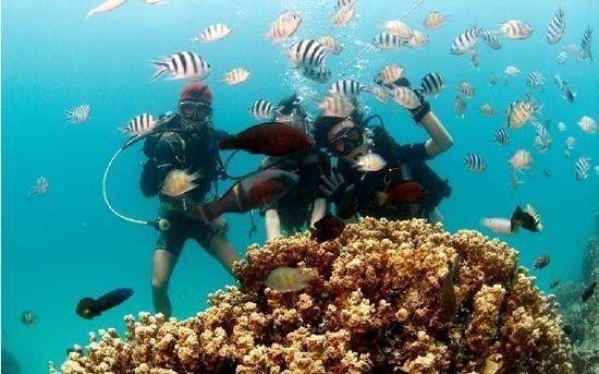 海南灿烂潜水观光