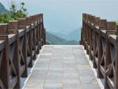 木桥通幽处