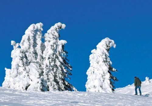 德国黑森林的冬景(点击更多高清美图)