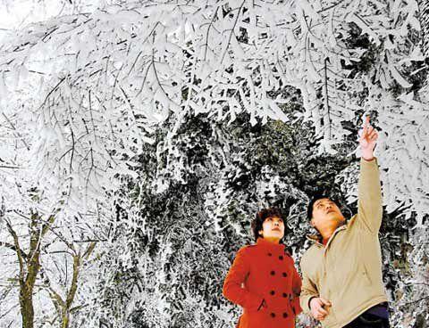 庐山雪景(点击更多高清美图)