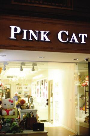 萌宠店PinkCat返老还童的岁月(组图)