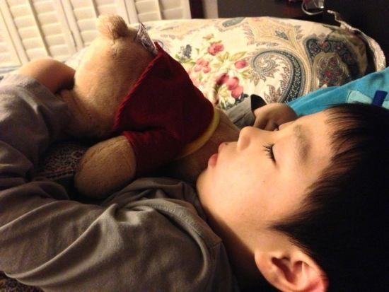 华少5岁儿子曝光抱毛熊可爱酣睡(图)