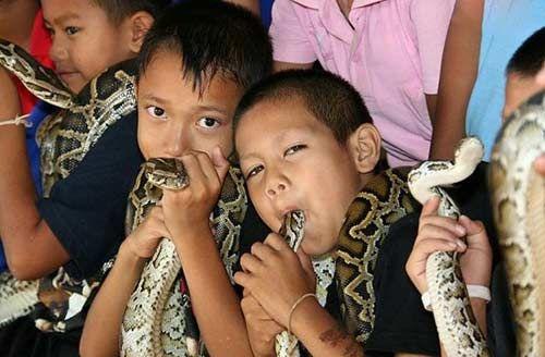 眼镜蛇村的孩子(点击更多高清美图)