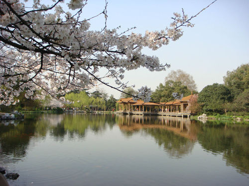 湘湖旅游度假区(点击更多高清美图)