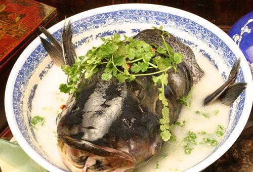 千岛湖鱼头(点击更多高清美图)
