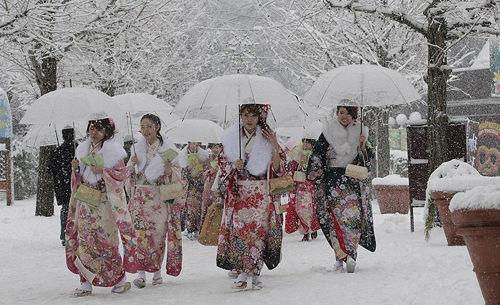 组图:日本关东地区雪中迎来成人节