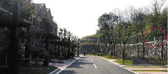 联排别墅的大门正对面就是墓,中间只有一条马路隔着。本报记者 史朵朵 摄