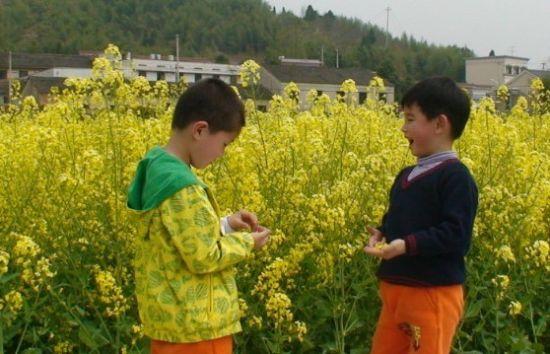 小朋友们,春天是什么颜色?   红色、绿色、黄色、花色。。。   一堂趣味实践课上,老师的问题将小朋友们带入了春天记忆中。   近日,下城区绿洲花园幼儿园中二班的小朋友们在家长和老师的带领下,来到富阳市洞桥镇上了一堂题为发现春天的颜色 的趣味实践课。在乡村原野中,小朋友们欢乐地寻找着春天的颜色。 采野花、寻小草,抓蝌蚪小朋友们与大自然来了一次亲密的接触。   这是金色的油菜花,这是粉色的桃花,这是绿色的小草、这个白色的小花杜添奕小朋友首先带着胜利品骄傲的向老师汇报战果