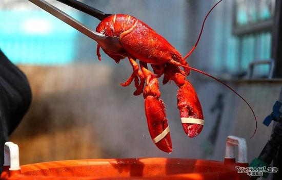 缅因州龙虾饕餮之旅