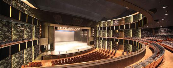 大剧院的剧场集戏剧