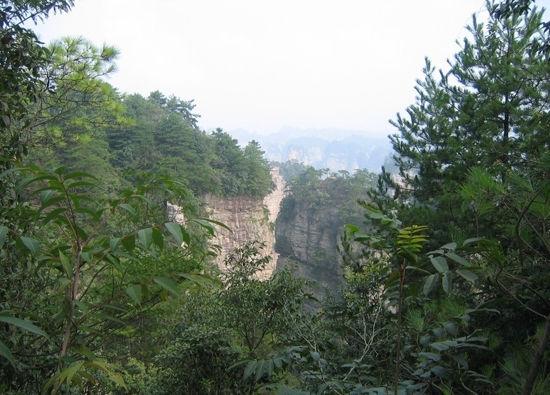天目山风景