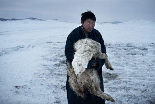仓巴只是普通的蒙古百姓