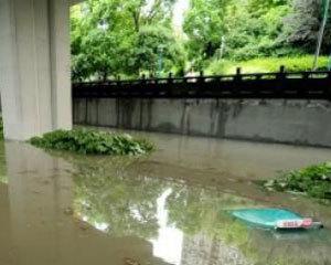 久旱杭州迎暴雨 多地被淹城市排水系统遭质疑