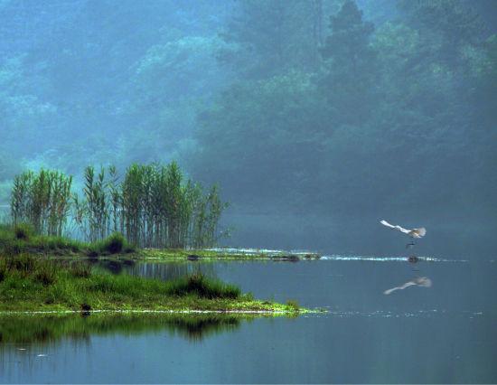 长田漾湿地