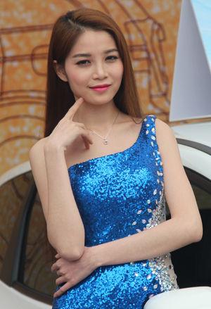 2014衢州汽车文化艺术节车模斗艳