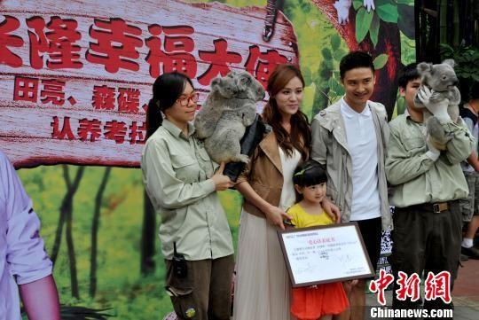 长隆野生动物世界是中国大陆唯一展出考拉的动物园