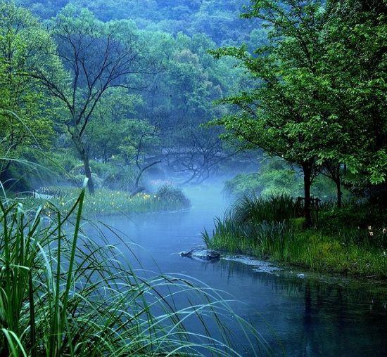 溪水缠绕-陶涛