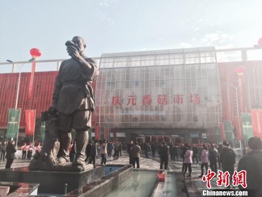 浙江庆元香菇市场 奚金燕 摄