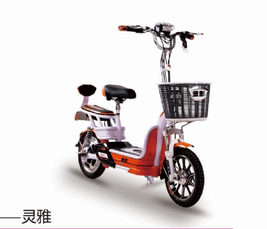 豪华二轮电瓶车_2018年中国十大电动车排行榜图片
