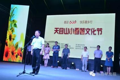 临安市人民政府副市长吴春法宣布开幕