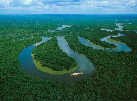 亚马逊丛林